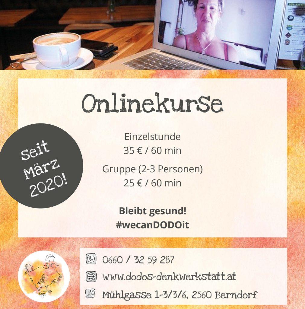 Online-Nachhilfe bei Dodos Denkwerkstatt
